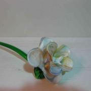 Fleur/3
