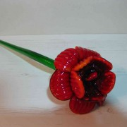 Fleur/8